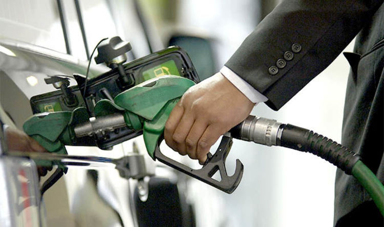Petrol car owners missing out out on low-carbon fuel due to Government delays claims study | Express.co.uk